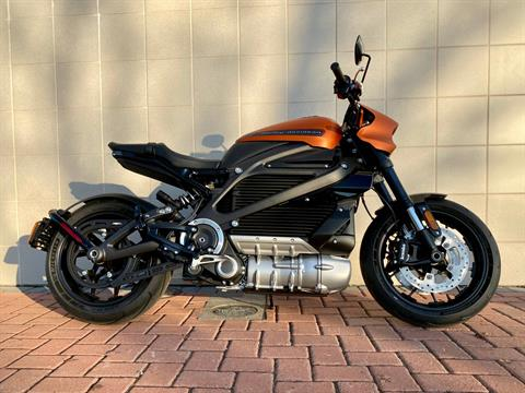 2020 Harley-Davidson Livewire™ in Livermore, California - Photo 1