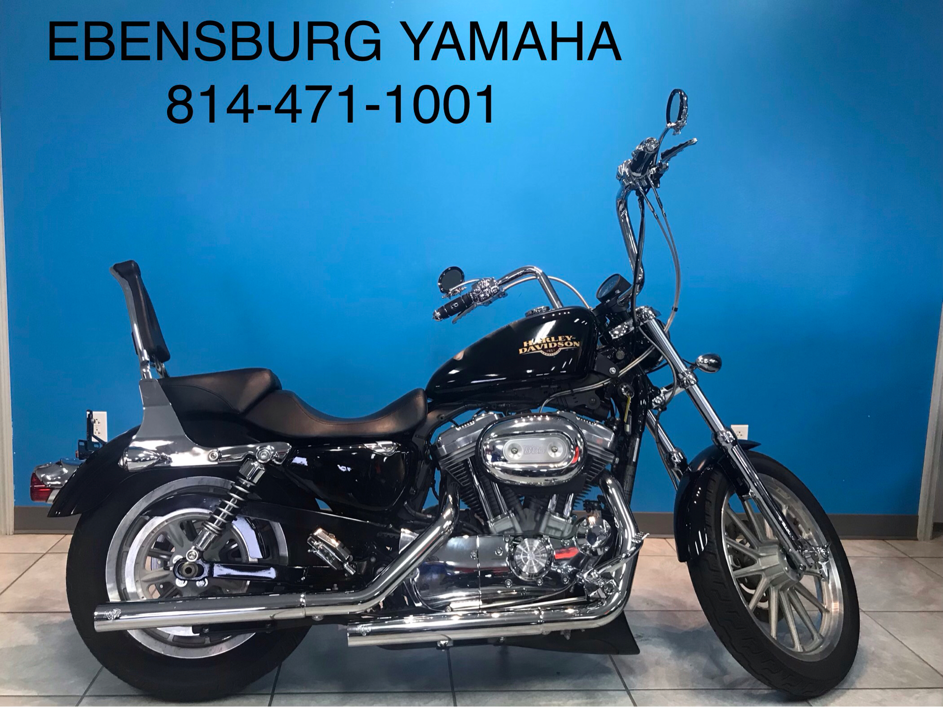 2010 Harley-Davidson Sportster 883 Low for sale 3687