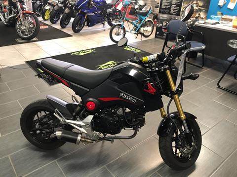 2015 Honda Grom® in Ebensburg, Pennsylvania - Photo 1