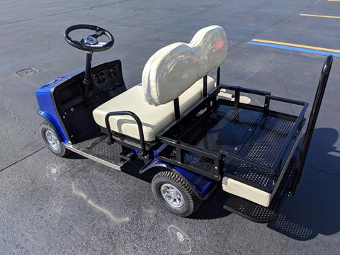2018 Cricket Mini-Cart SX-3 in Fort Pierce, Florida
