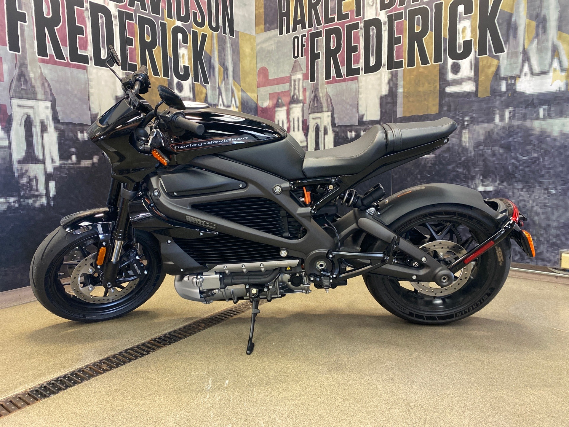 2020 Harley-Davidson Livewire™ in Frederick, Maryland - Photo 1