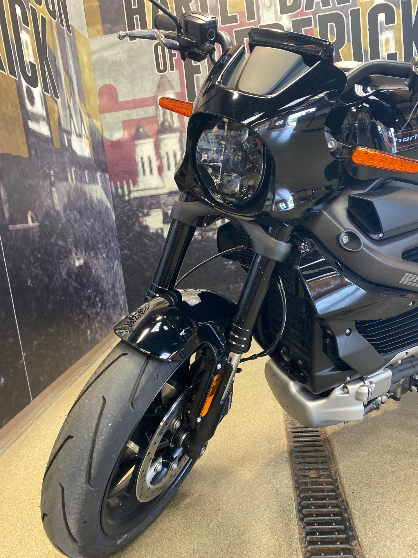 2020 Harley-Davidson Livewire™ in Frederick, Maryland - Photo 3