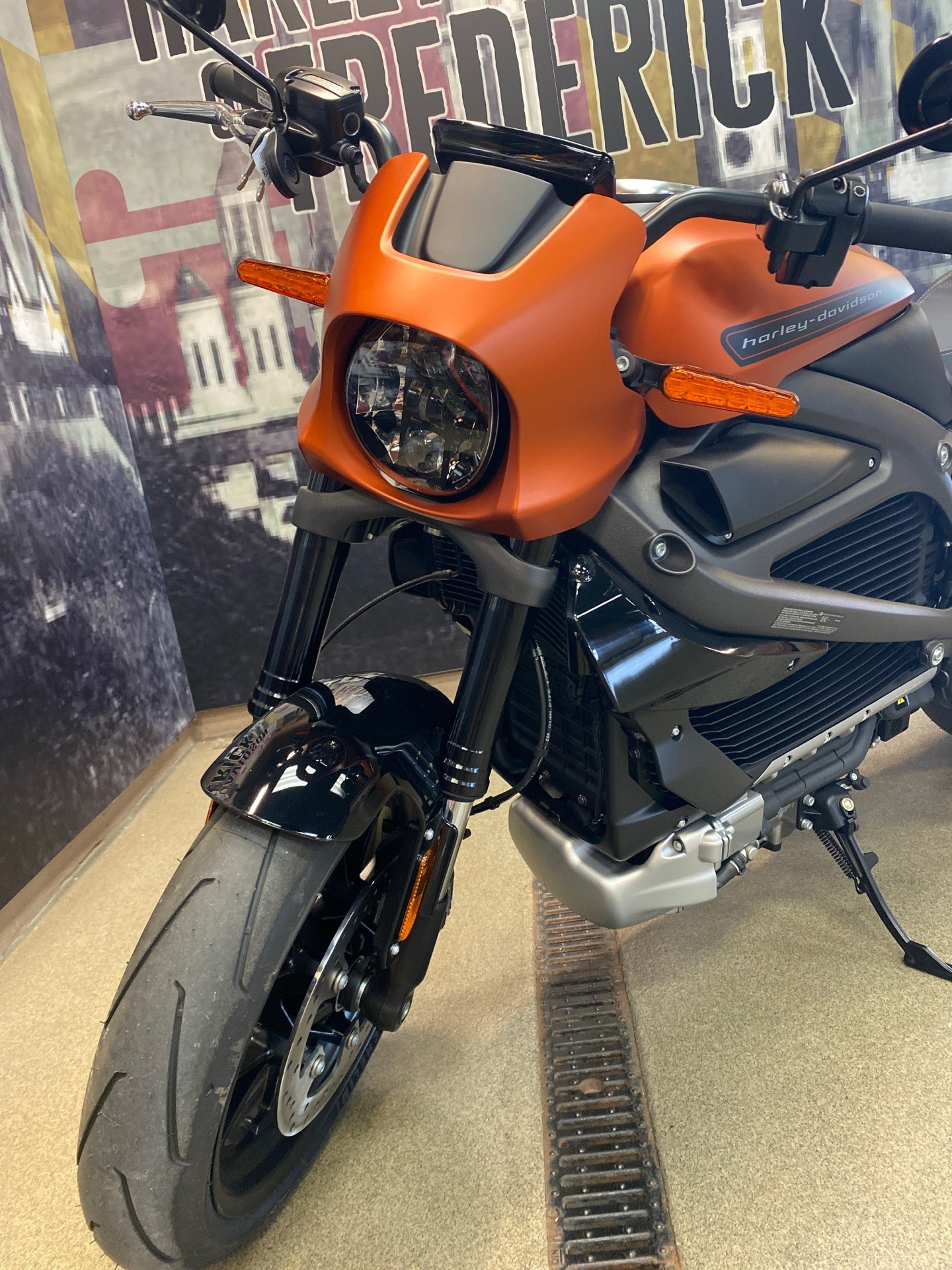 2020 Harley-Davidson Livewire™ in Frederick, Maryland - Photo 6