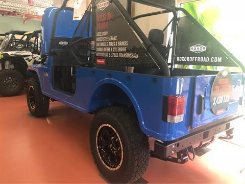 2018 Mahindra Automotive North America ROXOR Classic II in Chesapeake, Virginia