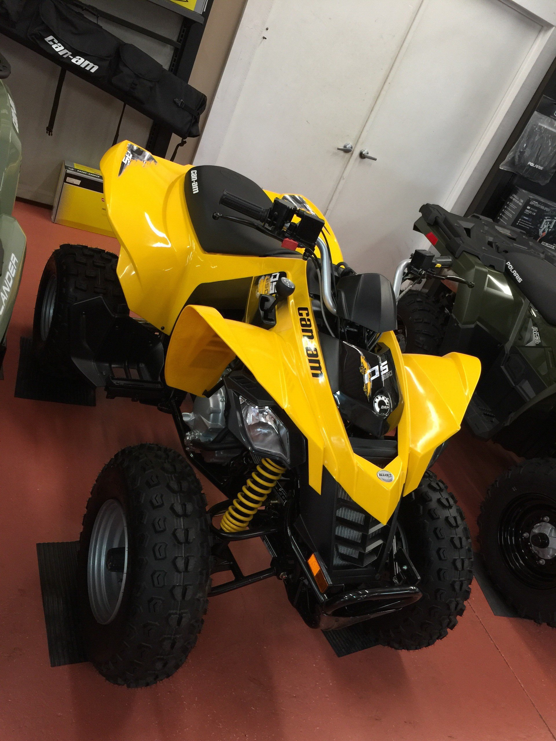 2019 Can-Am DS 250 in Chesapeake, Virginia - Photo 2