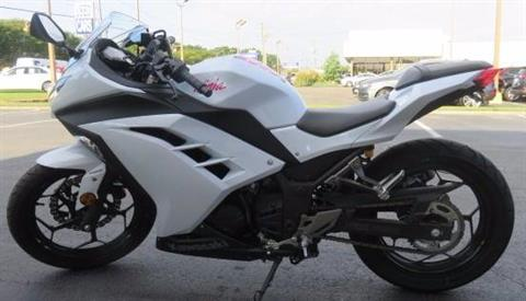 2015 Kawasaki Ninja® 300 in Virginia Beach, Virginia