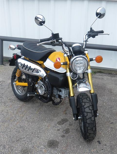 2019 Honda Monkey in Virginia Beach, Virginia - Photo 1