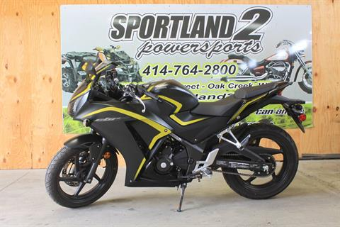 2015 Honda CBR®300R ABS in Oak Creek, Wisconsin