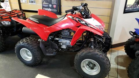 2018 Honda TRX250X in Allen, Texas - Photo 1