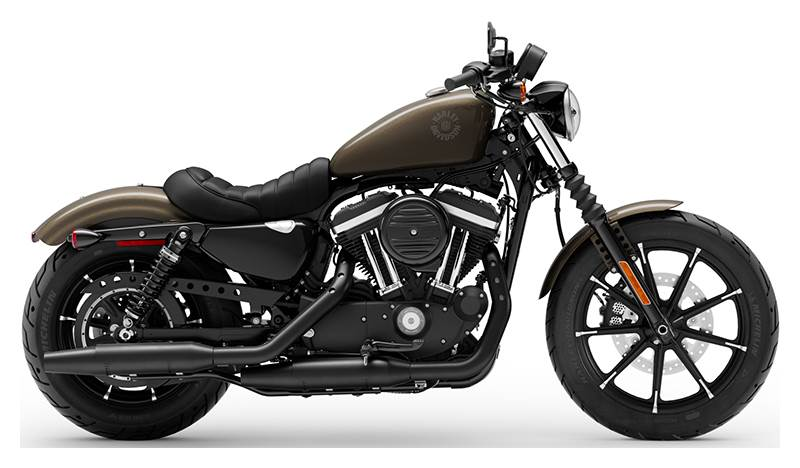 2020 Harley-Davidson 883 Iron in Wintersville, Ohio