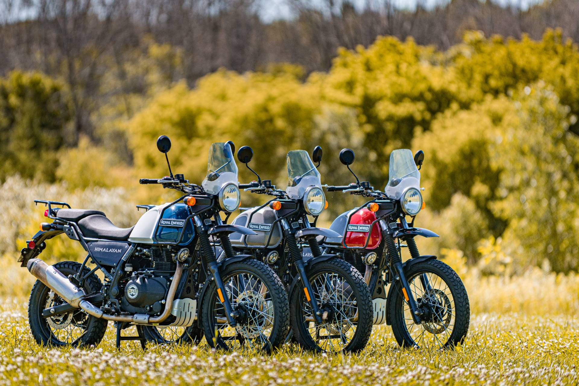 2021 Royal Enfield Himalayan 411 EFI ABS in Depew, New York - Photo 4