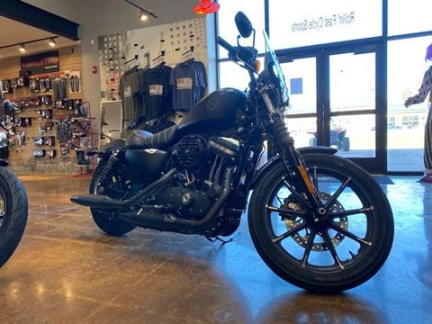 2019 Harley Davidson XL 883 in Lebanon, New Jersey - Photo 1