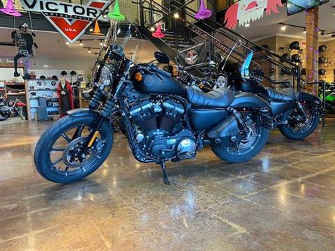 2019 Harley Davidson XL 883 in Lebanon, New Jersey - Photo 2