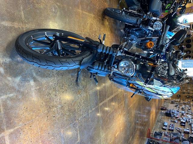 2019 Harley Davidson XL 883 in Lebanon, New Jersey - Photo 3
