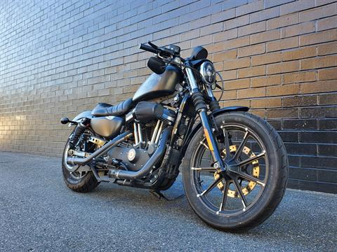 2017 Harley-Davidson Iron 883™ in San Jose, California - Photo 3
