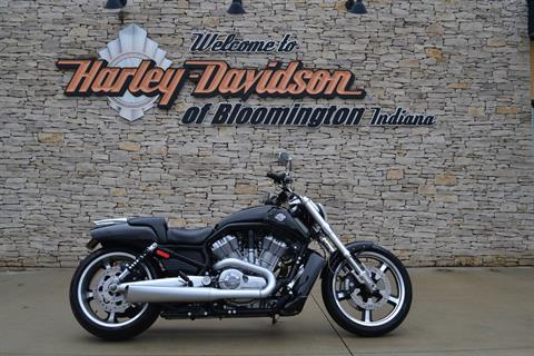 2015 Harley-Davidson V-Rod Muscle® in Bloomington, Indiana - Photo 1