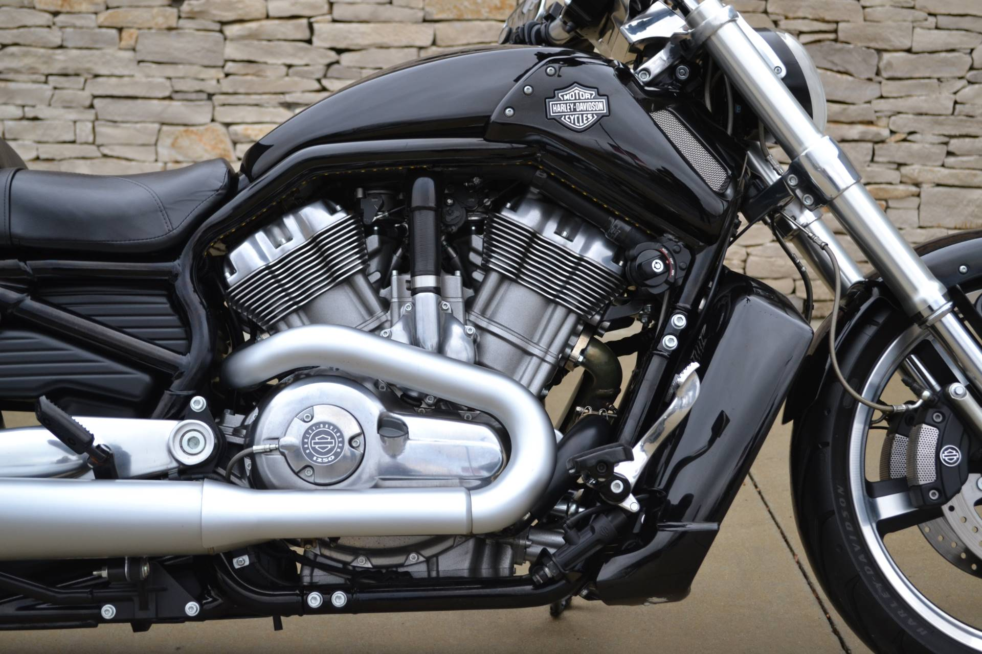 2015 Harley-Davidson V-Rod Muscle® in Bloomington, Indiana - Photo 2