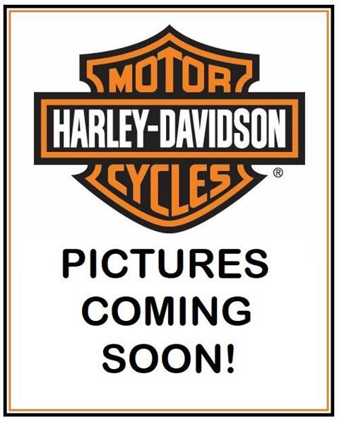 2017 Harley-Davidson Road Glide® Special in Valparaiso, Indiana - Photo 1