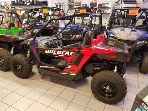 2017 Arctic Cat Wildcat Trail in Kaukauna, Wisconsin