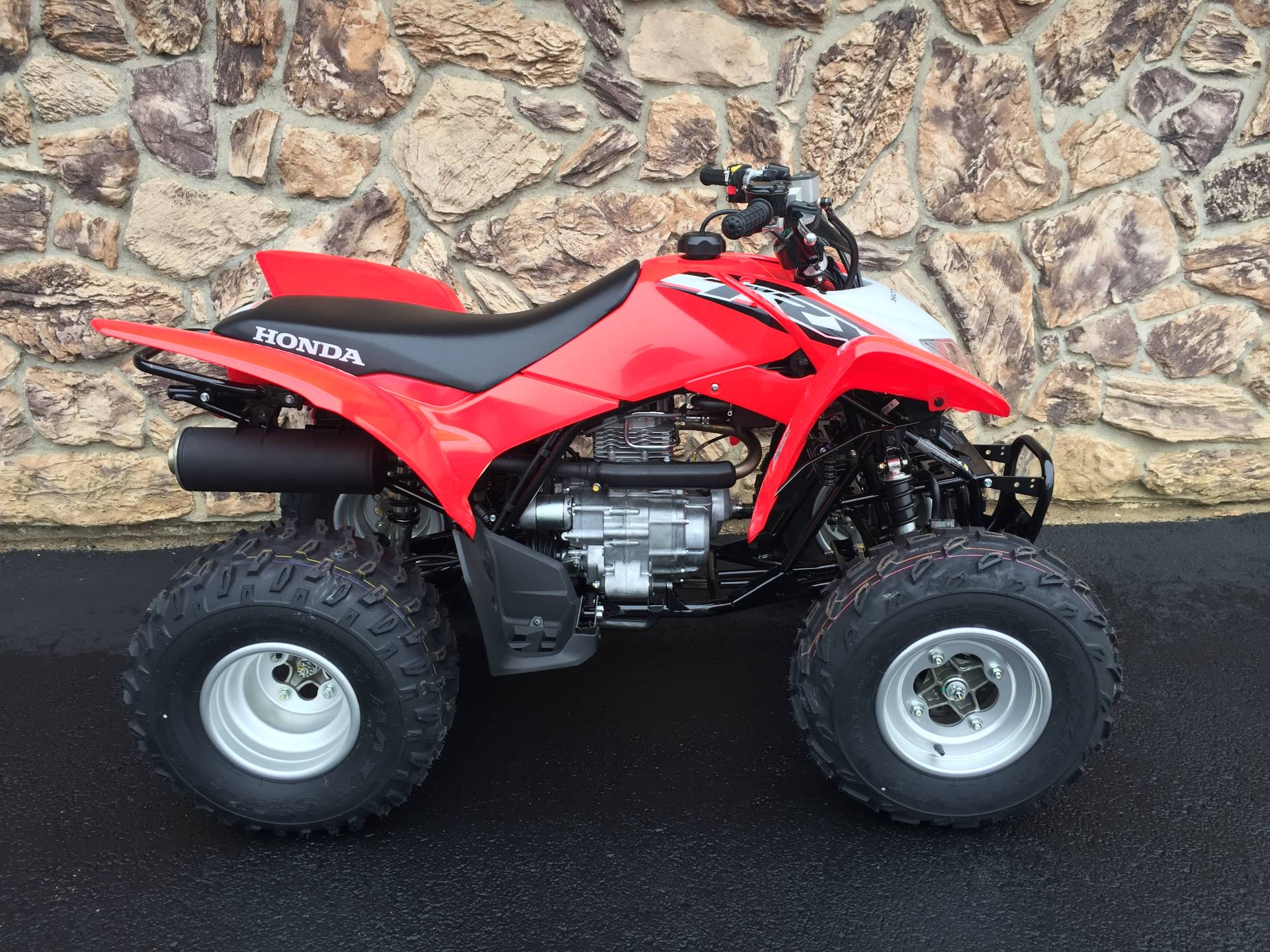 2019 Honda TRX250X in Aurora, Illinois