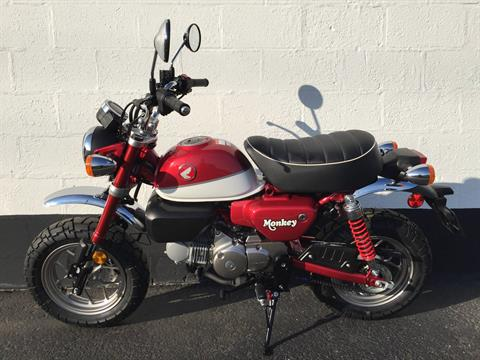 2019 Honda Monkey in Aurora, Illinois - Photo 3