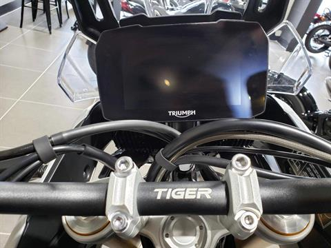 TIGER 900 RALLY PRO - Photo 12