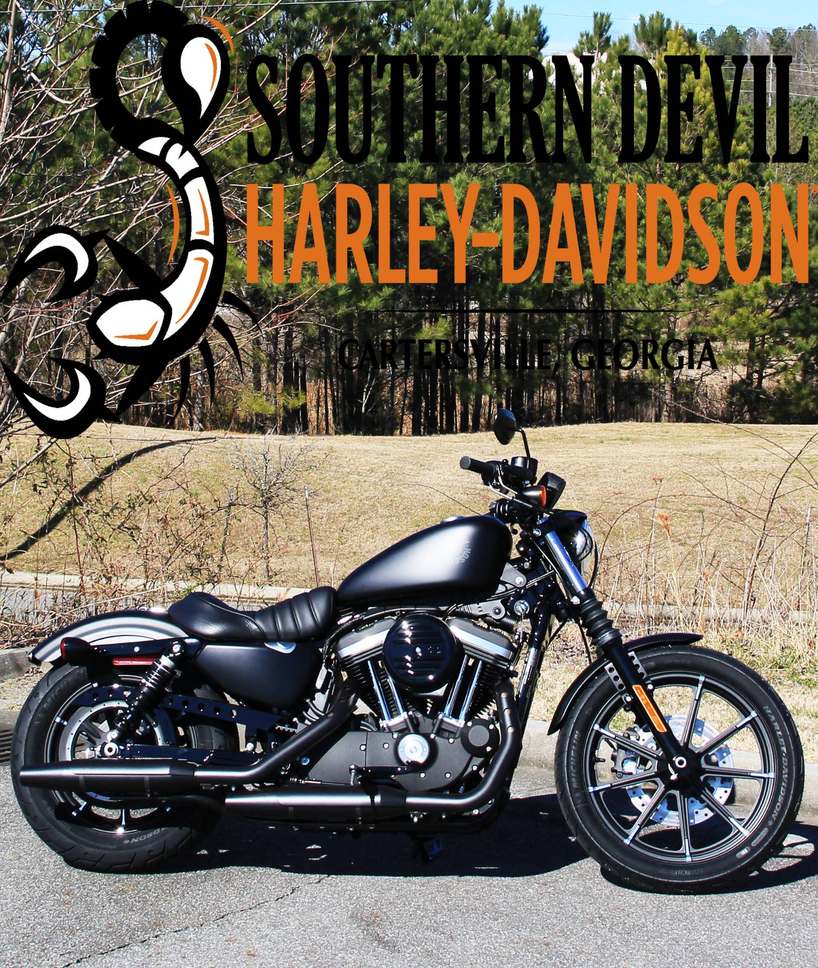 2020 Harley-Davidson Iron 883 in Cartersville, Georgia - Photo 1