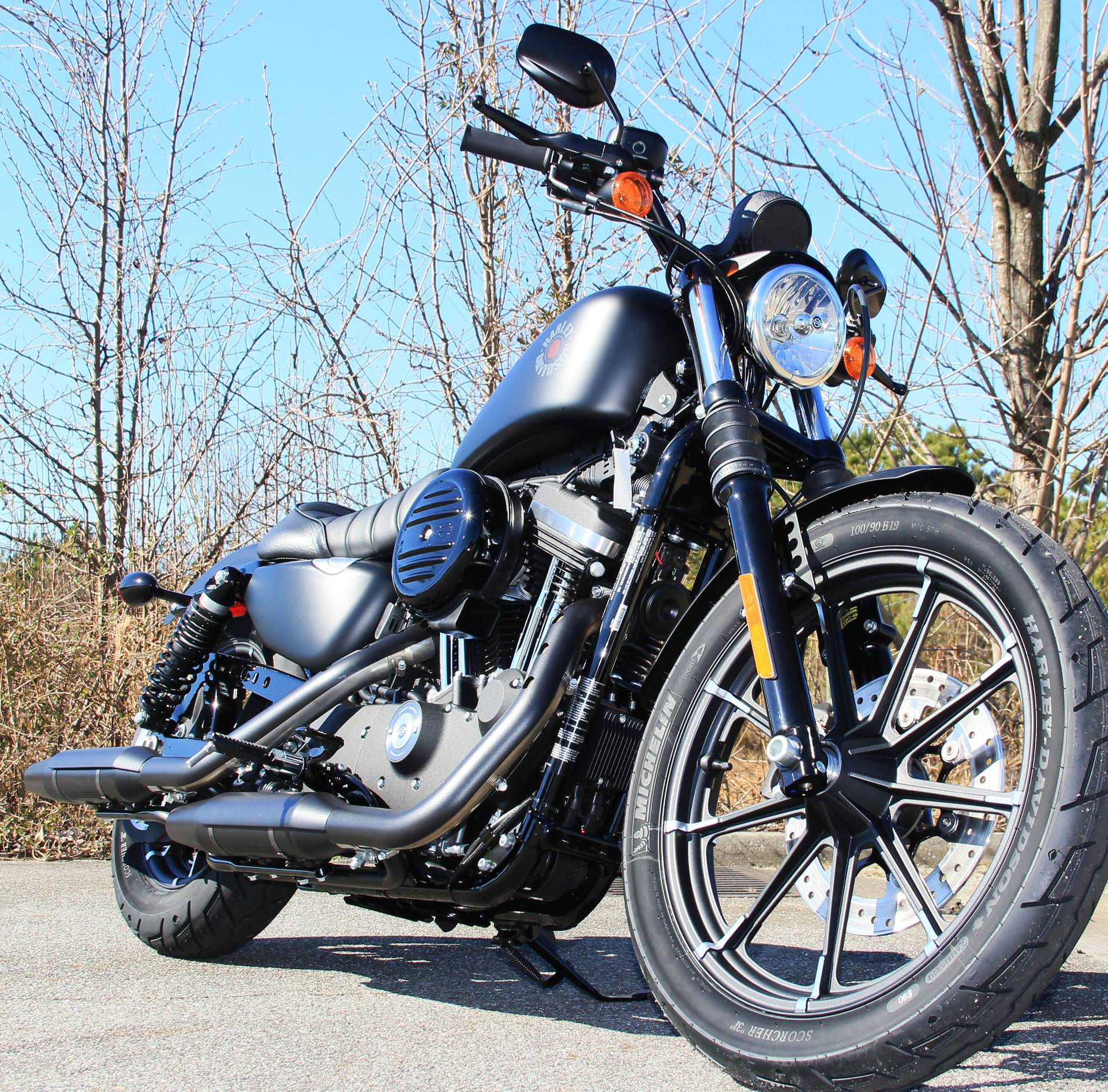 2020 Harley-Davidson Iron 883 in Cartersville, Georgia - Photo 3