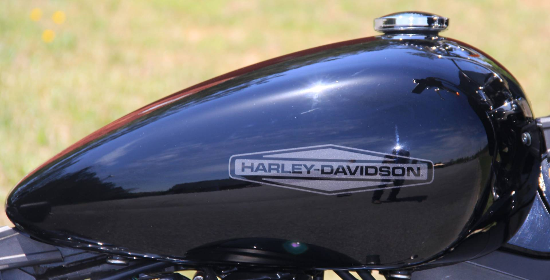 2020 Harley-Davidson Softail® Standard in Cartersville, Georgia - Photo 10