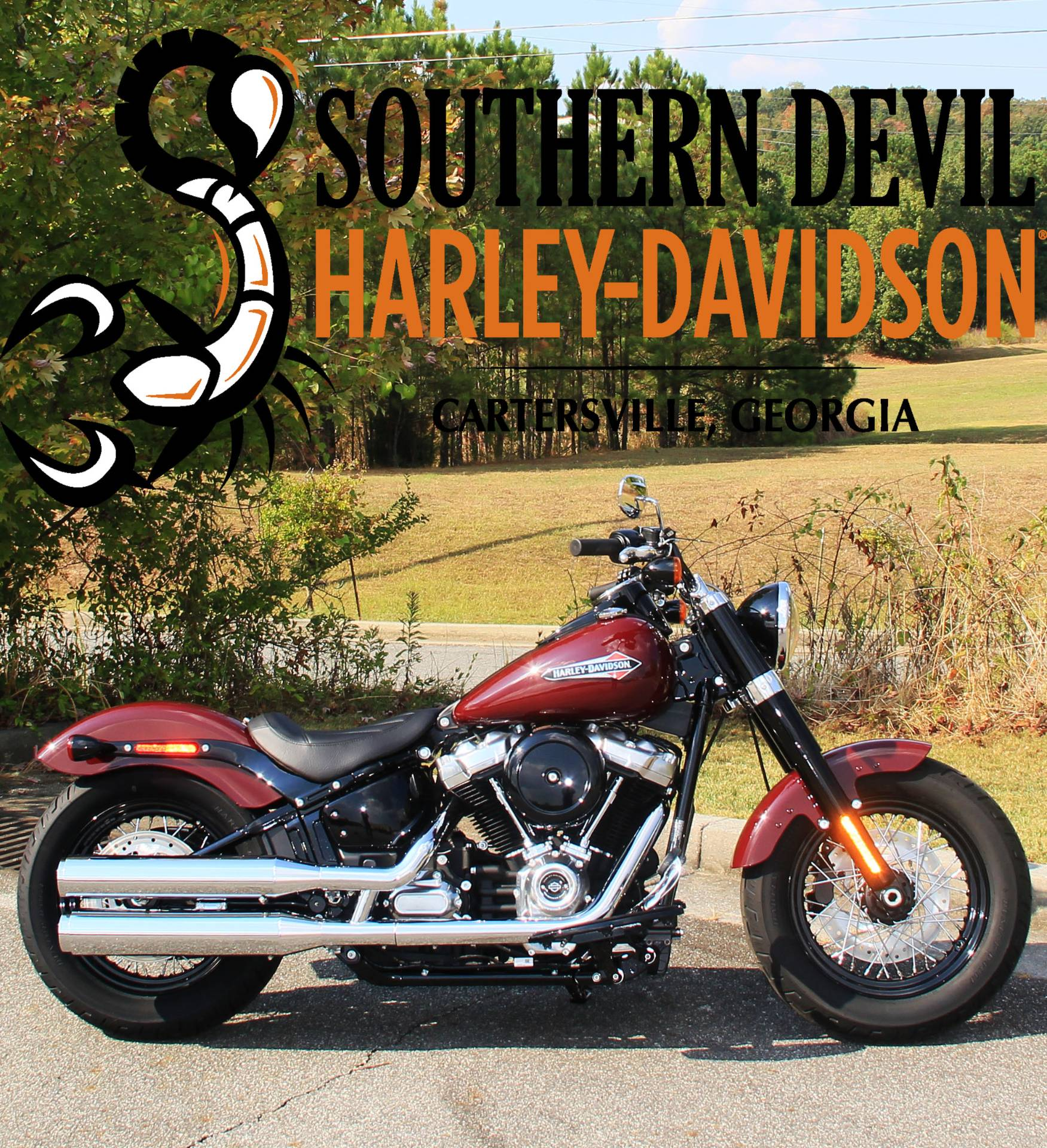 2020 Harley-Davidson Softail Slim® in Cartersville, Georgia - Photo 1
