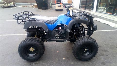 2018 Taotao USA ATV 150cc in Forest View, Illinois