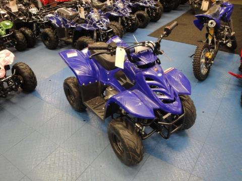 2013 Taotao USA 110cc in Forest View, Illinois