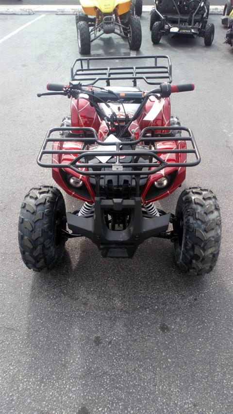 2018 Coolster ATV 125cc in Forest View, Illinois