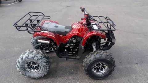 2018 Coolster ATV 125cc in Forest View, Illinois - Photo 2