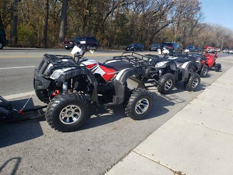 2019 Tao Tao 200cc in Forest View, Illinois - Photo 2