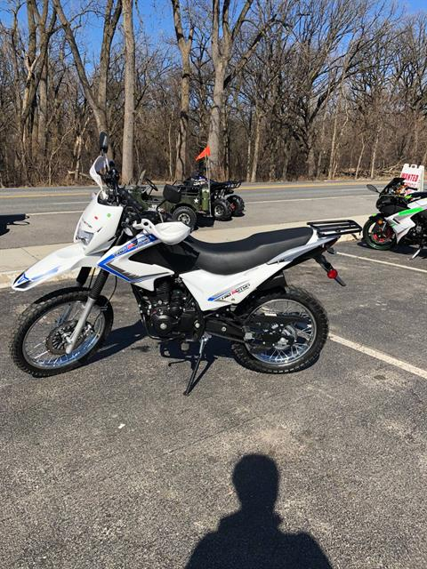 2019 Taotao USA 230cc in Forest View, Illinois - Photo 1