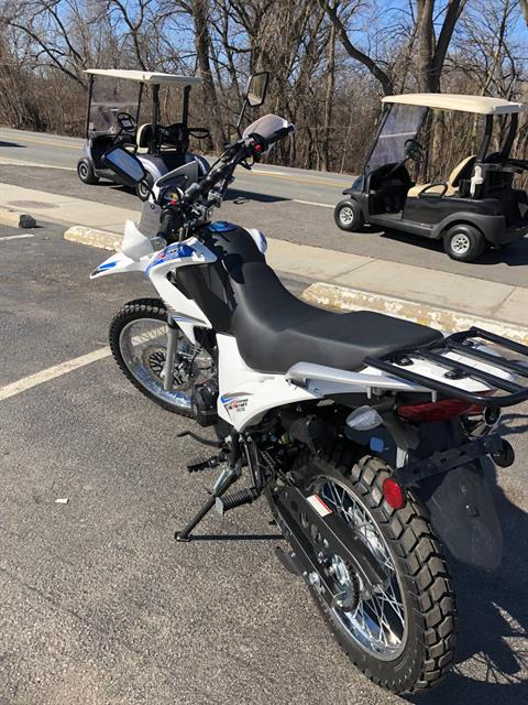 2019 Tao Motor 230cc in Forest View, Illinois - Photo 5