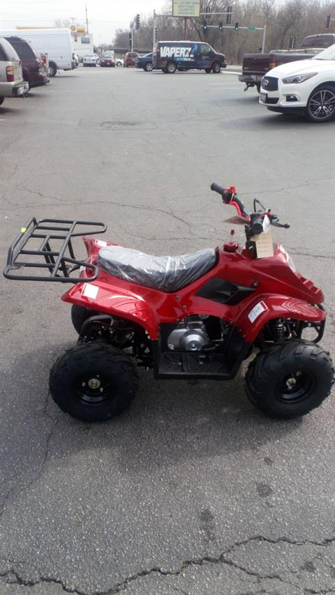 2018 Taotao USA ATV 110cc in Forest View, Illinois