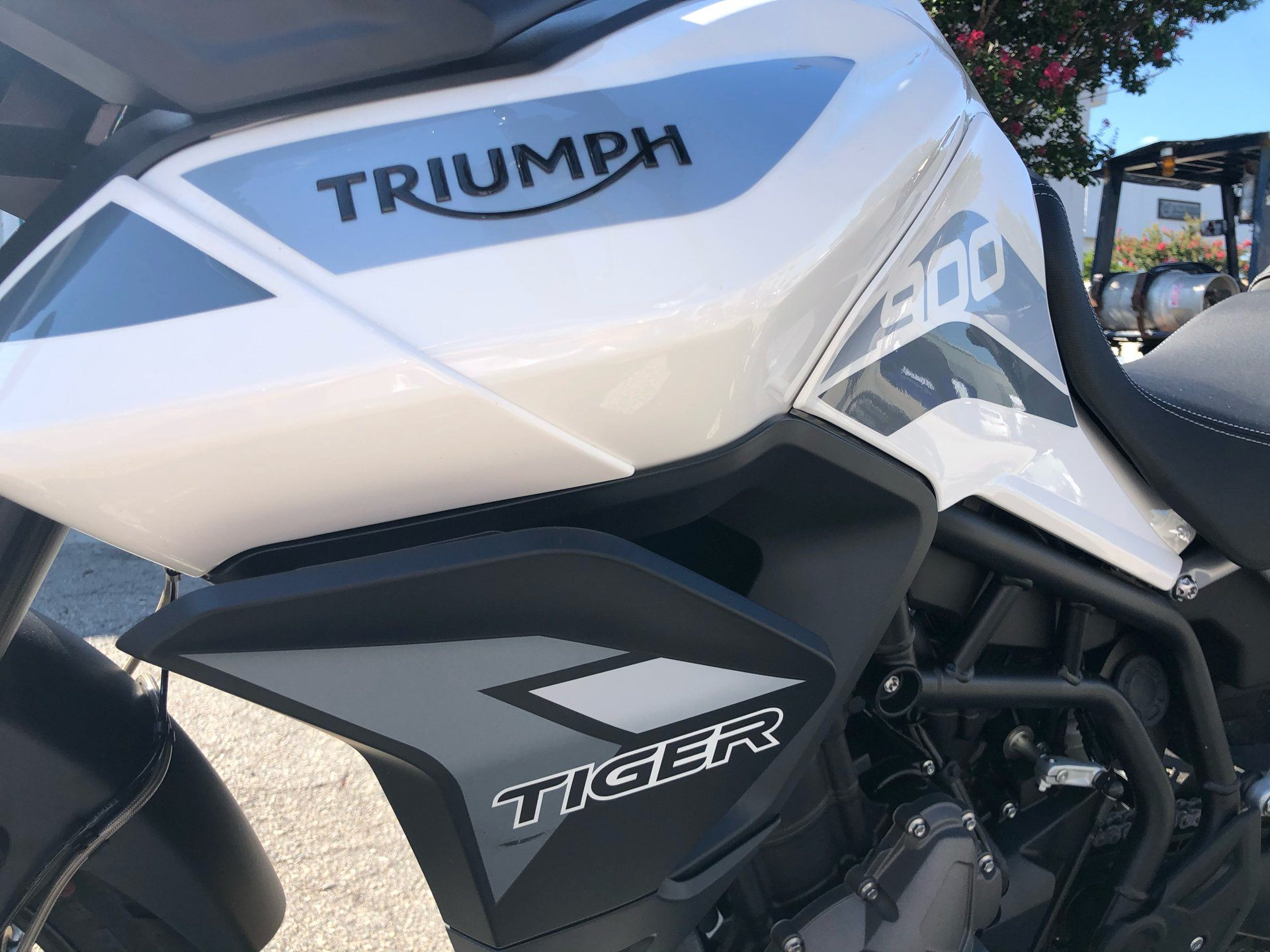 2020 Triumph Tiger 900 GT Low in Greenville, South Carolina - Photo 3