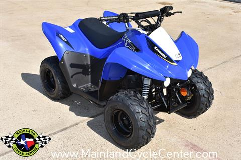 2020 Kawasaki KFX 50 in La Marque, Texas - Photo 2