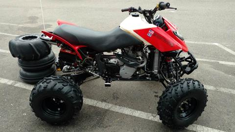 2004 Can-Am DS 650™ Baja in Auburn, California