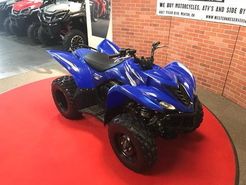 2009 Yamaha Wolverine 450 Auto. 4X4 in Mentor, Ohio