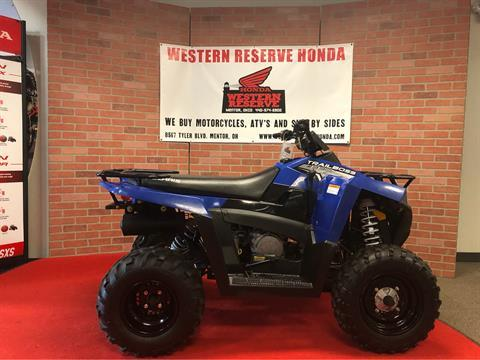 2013 Polaris Trail Blazer® 330 in Mentor, Ohio