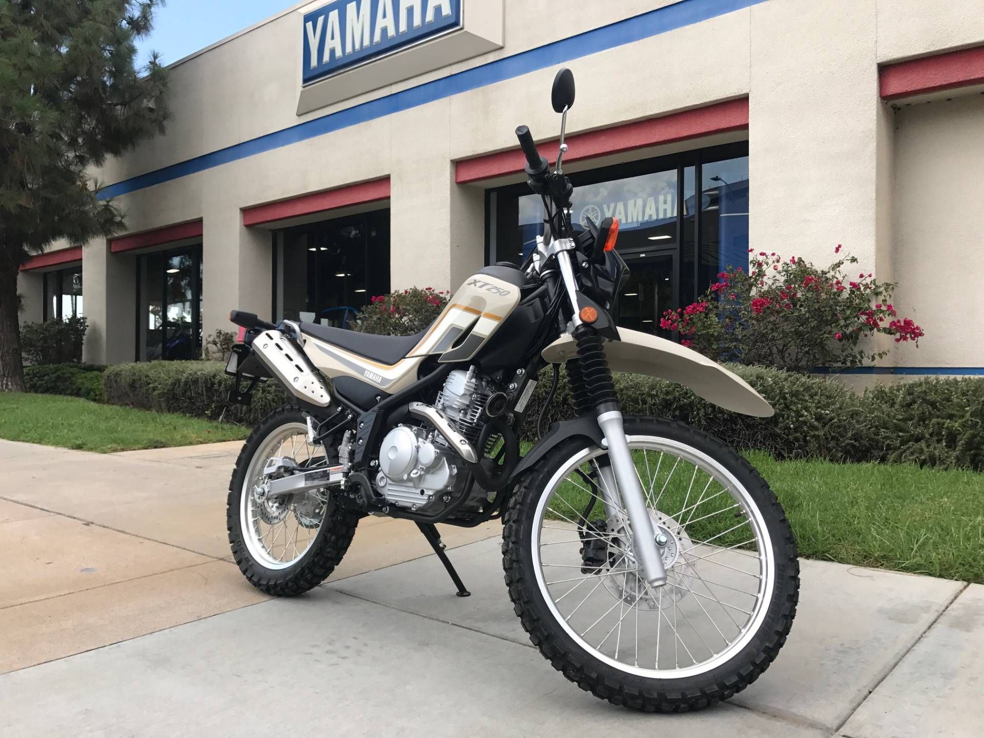 2019 Yamaha XT250 for sale 46078