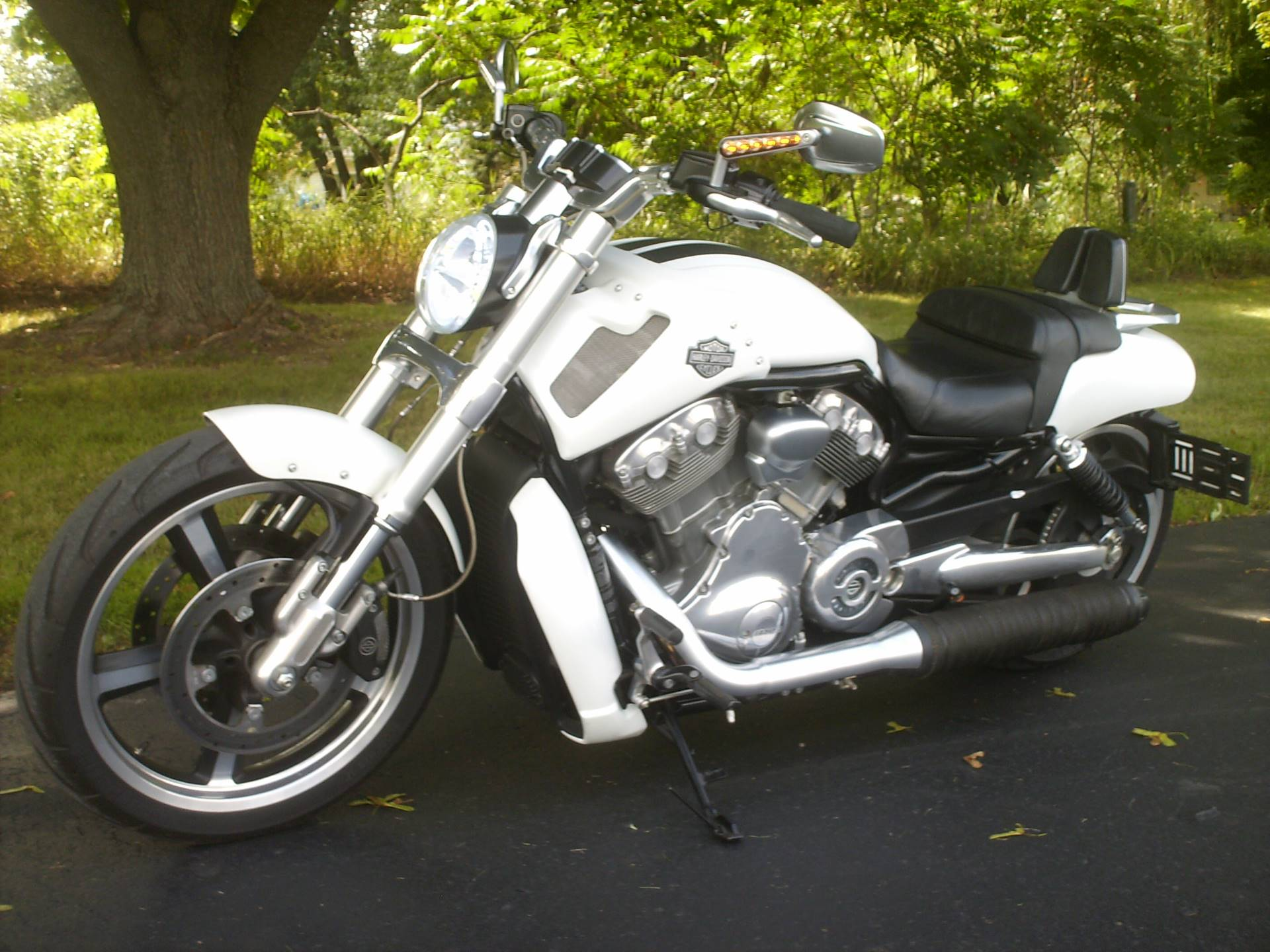 used 2013 harley davidson v rod muscle motorcycles in mukwonago wi