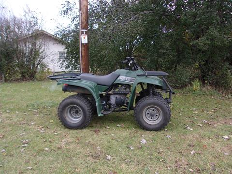 1999 Yamaha BearTracker in Mukwonago, Wisconsin - Photo 1