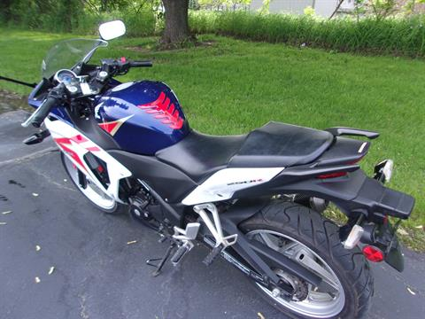2012 Honda CBR®250R in Mukwonago, Wisconsin - Photo 6