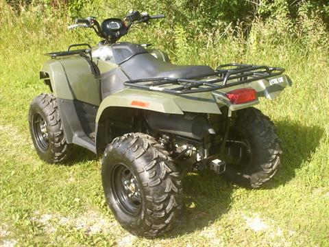 2014 Arctic Cat 500 in Mukwonago, Wisconsin