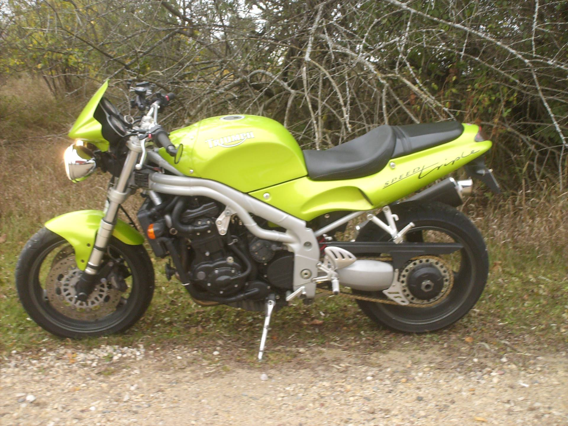1999 Triumph Speed Triple in Mukwonago, Wisconsin