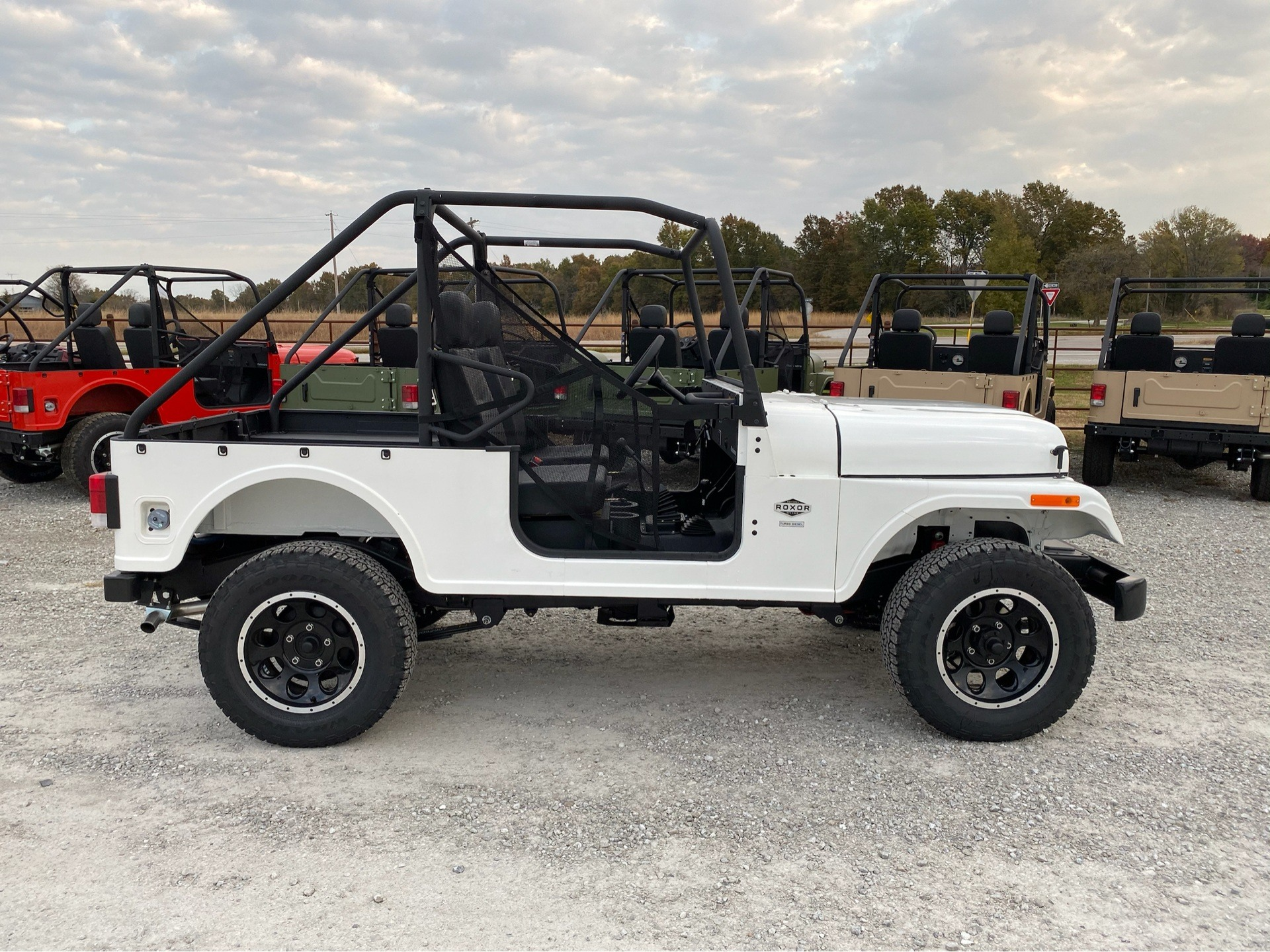 2019 Mahindra Automotive North America ROXOR Offroad in Bolivar, Missouri - Photo 1